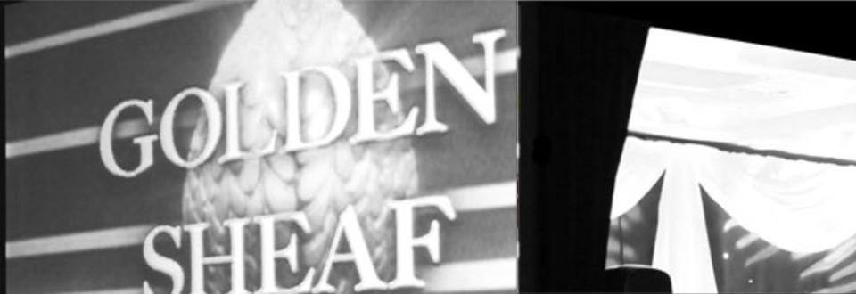 Best Emerging Filmmaker nom at Golden Sheaf awards!